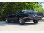 1974 Pontiac Firebird Trans Am for sale 101372432