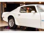 1974 Pontiac Firebird for sale 101374834