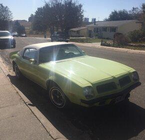 1974 Pontiac Firebird Esprit for sale 101224780