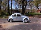 1974 Volkswagen Beetle for sale 101389117