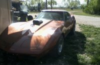1975 Chevrolet Corvette Coupe for sale 101064600