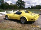 1975 Chevrolet Corvette for sale 101586298