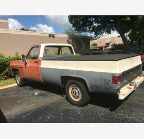 1976 Chevrolet C/K Truck for sale 100952952