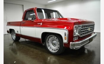 1976 Chevrolet C/K Truck for sale 101054921