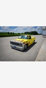 1976 Chevrolet C/K Truck Cheyenne for sale 101160551