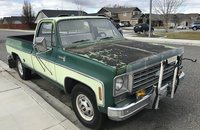 1976 Chevrolet C/K Truck Silverado for sale 101285773