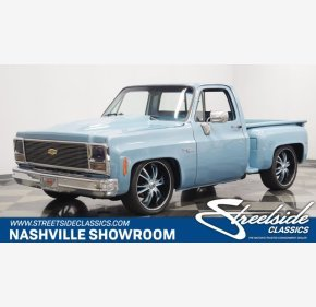 1976 Chevrolet C/K Truck for sale 101366594