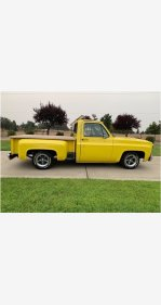 1976 Chevrolet C/K Truck for sale 101377188