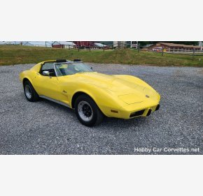 1976 Chevrolet Corvette for sale 101352760