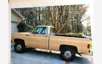 1976 Chevrolet Other Chevrolet Models for sale 101100642