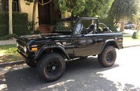 1976 Ford Bronco for sale 101032800