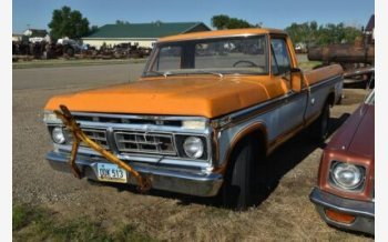 1976 Ford F150 for sale 101555698