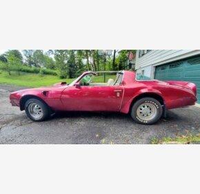1976 Pontiac Firebird for sale 101195366