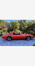 1976 Pontiac Firebird for sale 101462915