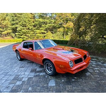 1976 Pontiac Firebird for sale 101462915