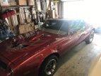 1976 Pontiac Firebird for sale 101586431