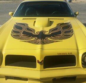 1976 Pontiac Firebird Trans Am for sale 101443062