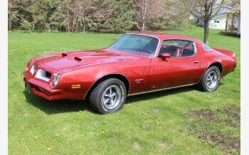 1976 Pontiac Firebird Esprit for sale 101525911