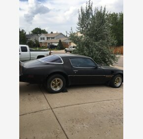 1976 Pontiac Trans Am for sale 100972109
