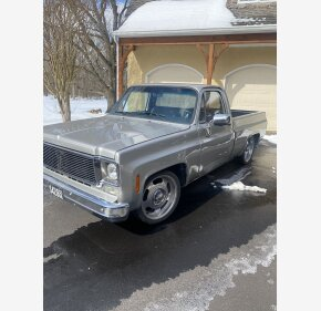 1977 Chevrolet C/K Truck Custom Deluxe for sale 101011808