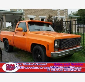 1977 Chevrolet C/K Truck for sale 101070846