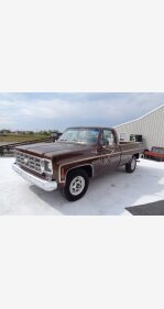 1977 Chevrolet C/K Truck for sale 101222987