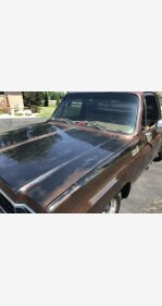 1977 Chevrolet C/K Truck for sale 101254265