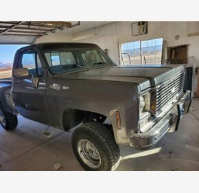 1977 Chevrolet C/K Truck for sale 101445393