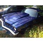 1977 Chevrolet Camaro for sale 101586161