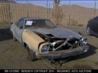 1977 Ford Mustang for sale 101016096