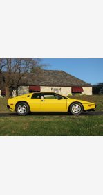 1977 Lotus Esprit for sale 101459541