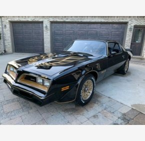 1977 Pontiac Firebird for sale 101244447