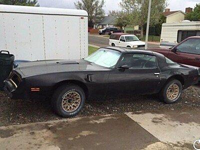 1977 Pontiac Firebird for sale 101400896