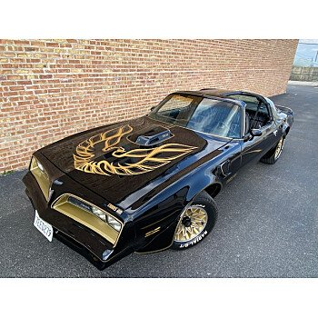 1977 Pontiac Trans Am for sale 101309938