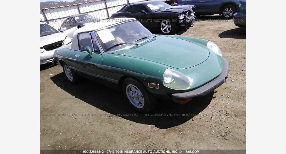 1978 Alfa Romeo Spider for sale 101015013
