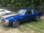1978 Buick Skylark for sale 101035654