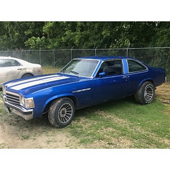 1978 Buick Skylark for sale 101035654