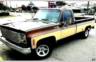 1978 Chevrolet C/K Truck Silverado for sale 101203129