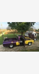 1978 Chevrolet C/K Truck for sale 100863698