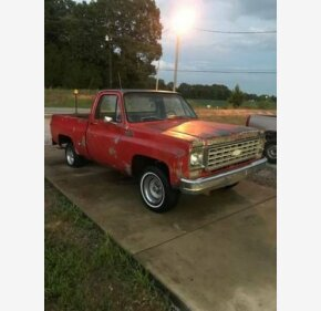 1978 Chevrolet C/K Truck for sale 101003487