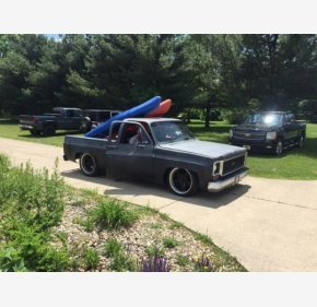 1978 Chevrolet C/K Truck for sale 101043164