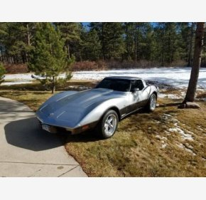 1978 Chevrolet Corvette for sale 100846307