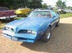 1978 Pontiac Firebird for sale 100833057