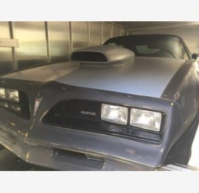 1978 Pontiac Firebird for sale 101073040