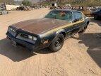 1978 Pontiac Firebird for sale 101431987