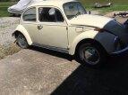 1978 Volkswagen Beetle for sale 101343199
