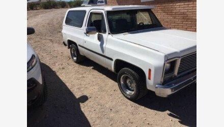 1979 Chevrolet Blazer for sale 101202675