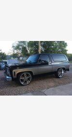 1979 Chevrolet Blazer for sale 101394992