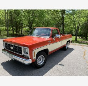 1979 Chevrolet C/K Truck Cheyenne for sale 101189079