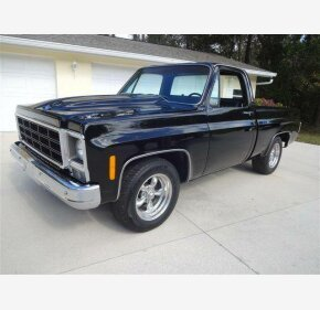 1979 Chevrolet C/K Truck for sale 101128946